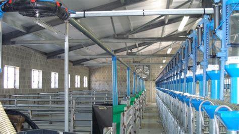 alimentazione suino suini impianto a secco ci va impianti fotovoltaici