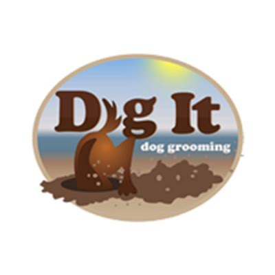 dogs dig it dig it grooming in minneapolis mn homeguide