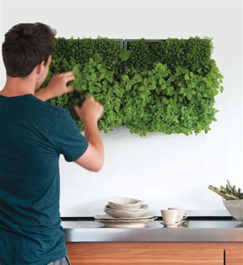pflanzenwand selber machen wandgestaltung wohnzimmer foto auf holz selber machen