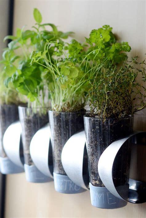 simple ideas  indoor diy garden homemydesign