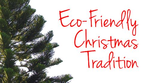 start an eco friendly christmas tree tradition in your