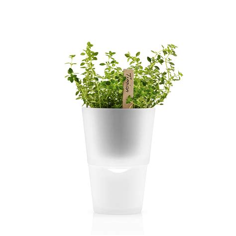 herb pot buy eva solo herb pot 11cm frosted glass amara