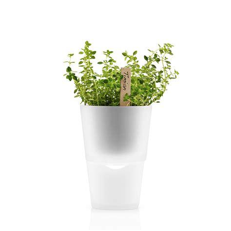 herb pot buy eva solo herb pot 11cm frosted glass amara