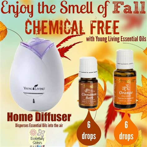 fall scents 25 best ideas about fall scents on pinterest diy fall scents house smells fall essential