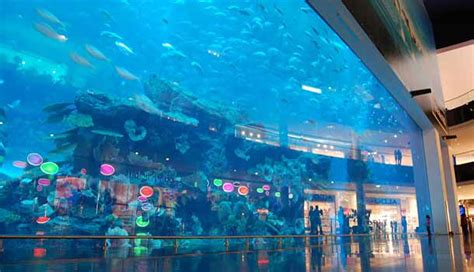 10 largest most all around best aquariums in the world