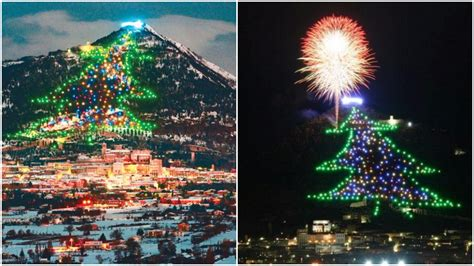 o christmas tree in italian oh tree oh tree a small town in italy boasts in the world best
