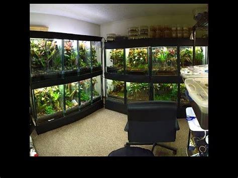 frog room slider frog room update