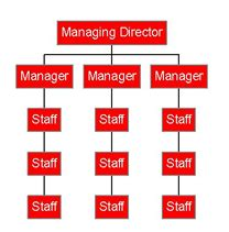 tall organisational structures