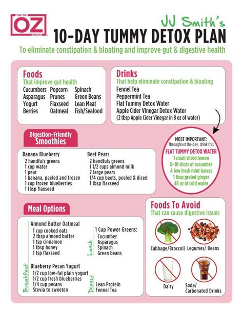4 Day Detox Diet by Best 25 10 Day Cleanse Ideas On 10 Day Detox