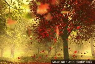 animated leaves falling gif 05 october 2013 allaboutmanners