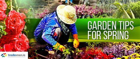 The Tradesmen Gardener garden tips for tradesmen ie blogtradesmen ie