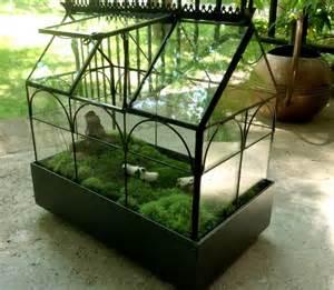 terrarium pictures and ideas
