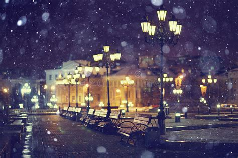 bench at night benches night city lantern moscow stock photo image of