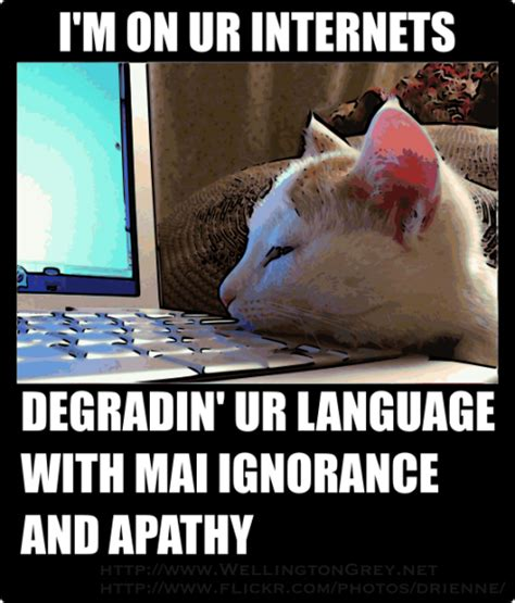 Computer Illiterate Meme - lolcat literacy word and image