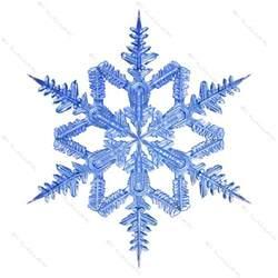 maya snowflake snow