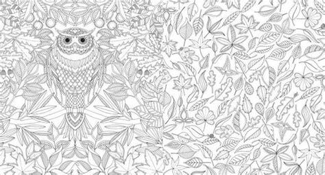 coloring for adults book kleurboek voor volwassenen 104 beste afbeeldingen kleuren voor volwassenen op
