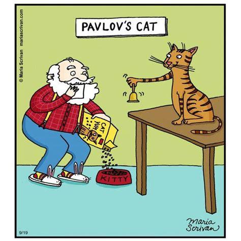 Cartoon Cat Memes - hot thread delle immagini lolline rofline 4 0 page