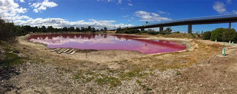 pink lake melbourne the pink lake of melbourne zinc moon