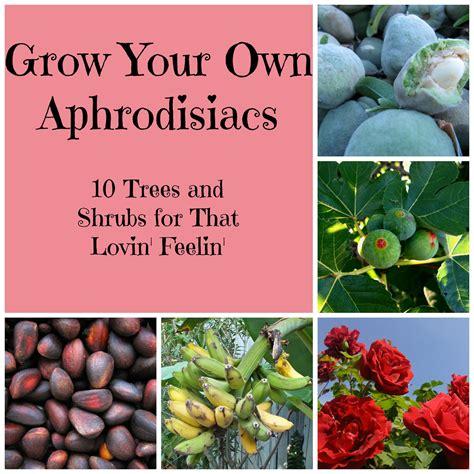 7 Aphrodisiacs For by Grow Your Own Aphrodisiacs