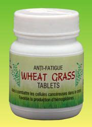 Chlorophyll Detox Thc by Wheat Grass Benefits On Cleanses Thc Detox