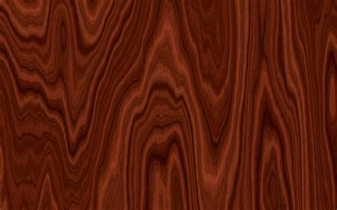 best wood for kitchen cabinets best wood species for denver kitchen cabinets