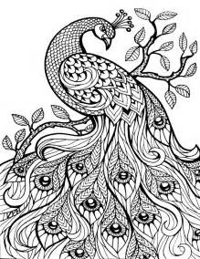coloring pages printable free free printable advanced coloring pages coloring home