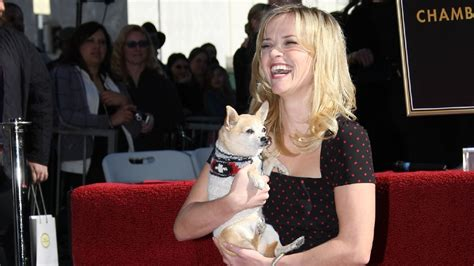 Reese Witherspoon Goes For An Egghunt by Reese Witherspoon Legally Chihuahua Dead His