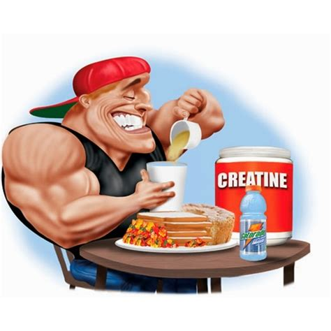creatine uptake creatine uptake bioavailability and efficacy we ve