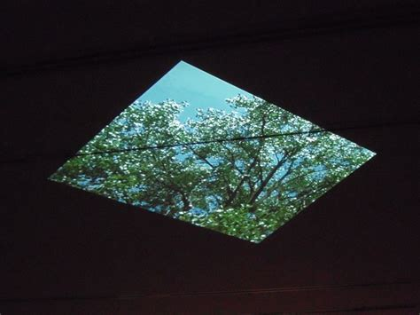 Ceiling Projection by Ceiling Projection Amazing Images