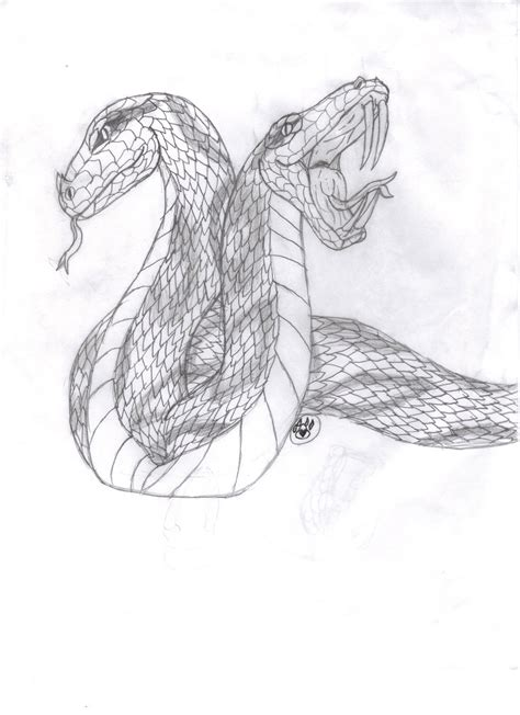 two headed snake drawing by badgerwolf97 on deviantart