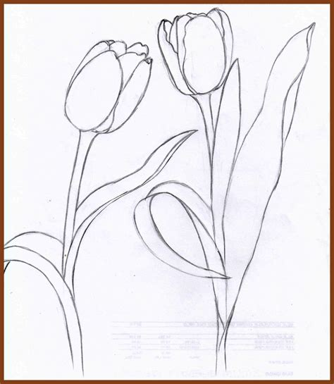 weekly doodles and tuts how to draw a tulip method 4