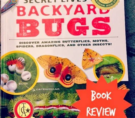 backyard bugs in our library the secret lives of backyard bugs goexplorenature com