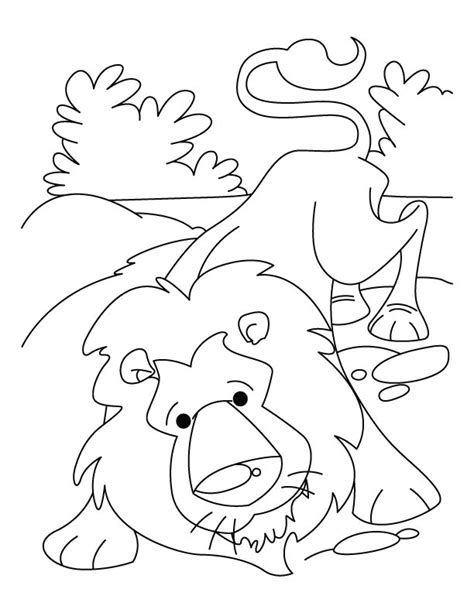 lion pride coloring pages pride the lion free colouring pages