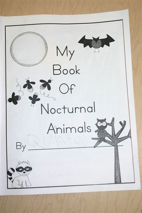 printable nocturnal animal book 62 best images about letter n crafts on pinterest nests