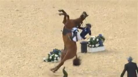 video pentathlon  cheval se cabre  ecrase son cavalier