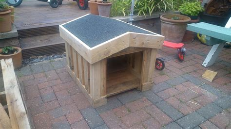 hand built dog houses pallet dog house building tips