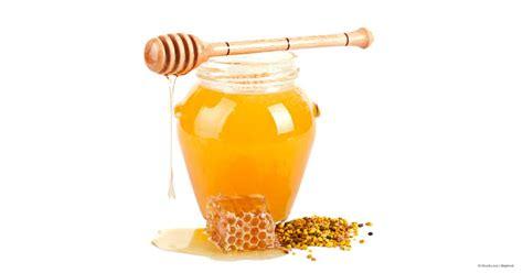 fb jar صور عسل الن حلة وإنتاج العسل