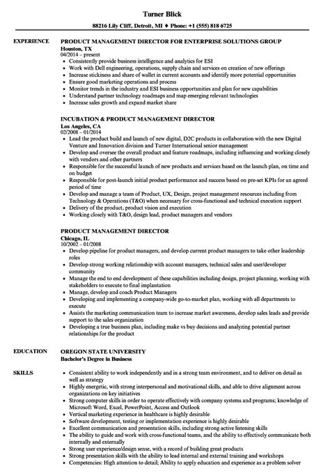 Managing Director Resume Sle by Managing Director Description Templates