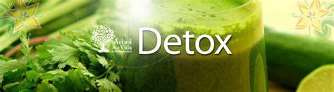 Banner Detox by 193 Rbol De La Vida Detox Con Limpieza De H 237 Gado