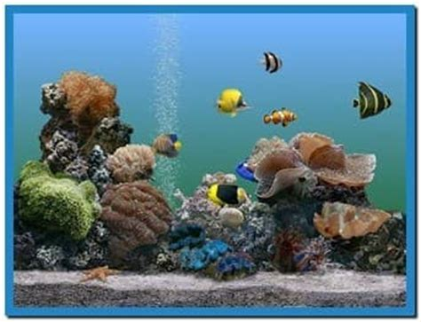 themes for windows 7 aquarium microsoft aquarium screensaver windows 7 download free