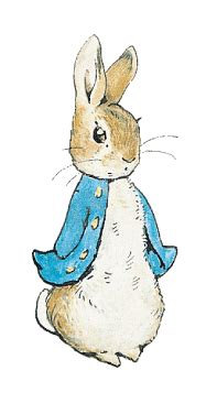 Some On The Go With The Rabbit Travel Vibe by About Beatrix Potter Rabbit