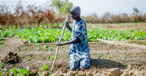 Where To Find In South Sudan Provillus | south sudan a race to save young lives action against