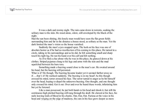 the outsiders book report essay 28 the outsiders book report essay 8th grade