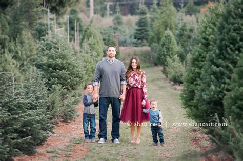 christmas tree farms in sacramento tree farm photoshoot 187 shan cait photography sacramento family photographer