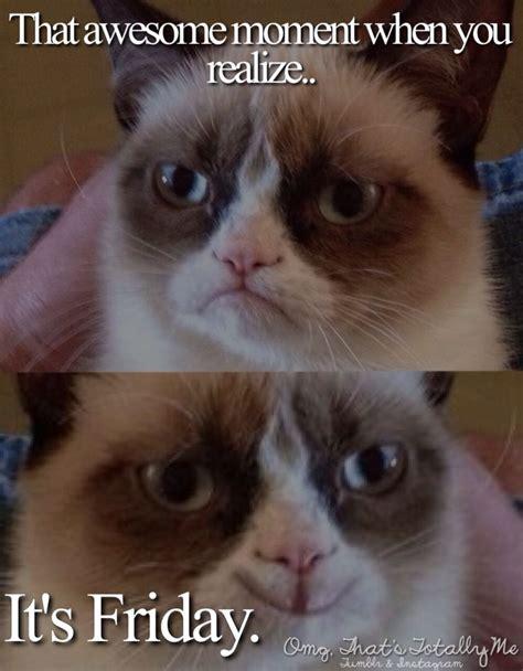 Grumpy Cat Friday Meme - 17 best ideas about tgif meme on pinterest friday work