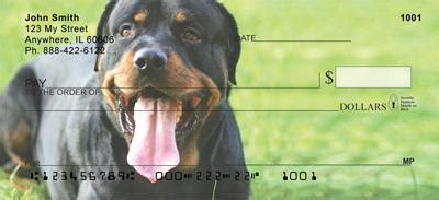 rottweiler personal checks playful rottweilers checks playful rottweilers personal checks