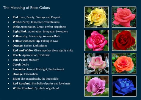 the meaning of colors secrets of a craft freak the meaning of rose colors
