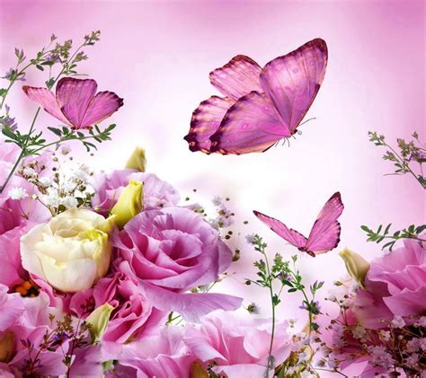 fiori e farfalle una testimonianza di fede aforismi e pensieri