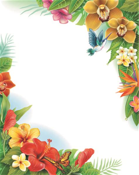 Wallpaper Flowerbutterfly Code No001 Butterfly Transparent Background Free Vector