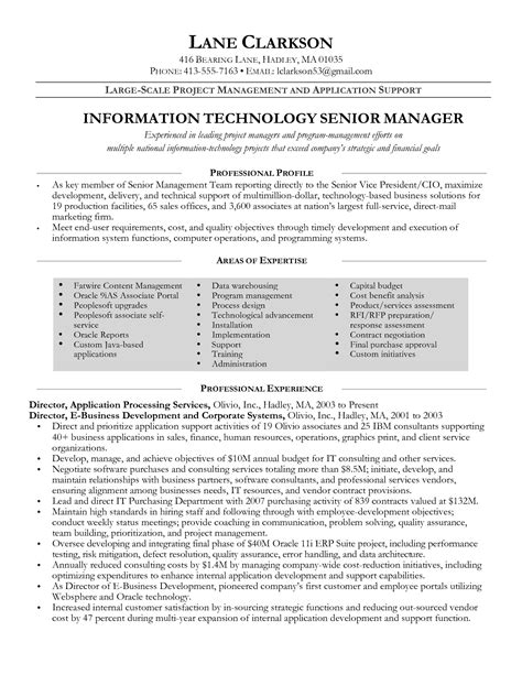 project management resume exles and sles erp project manager resume the best resume